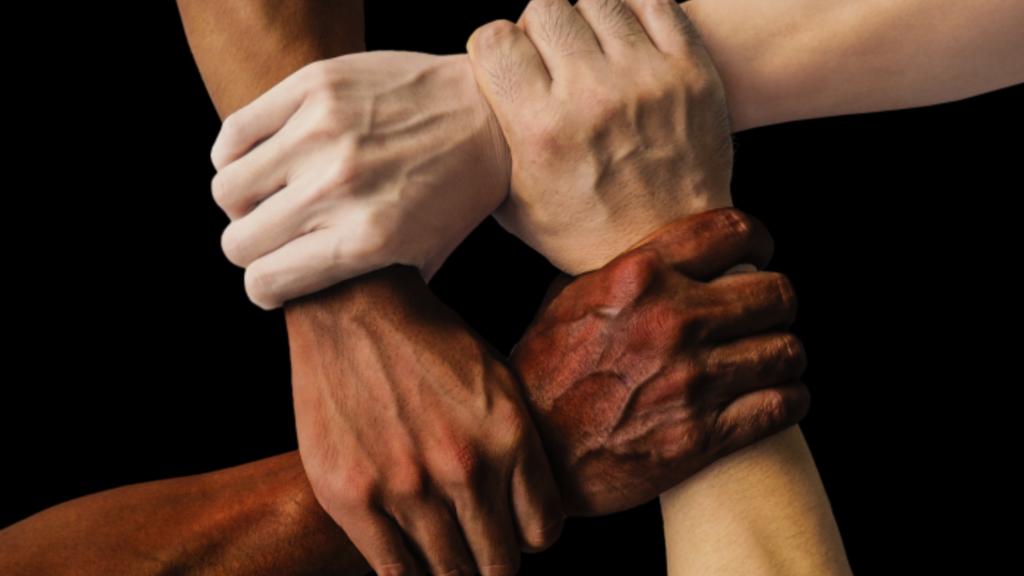 Stop rasismu