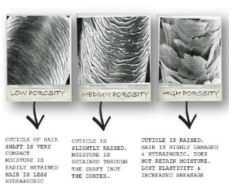 Poréznost vlasu